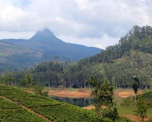 Šrilanka-Adamo vrh-vreden spoštovanja