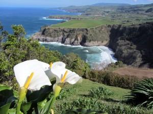 Azores-São Miguel-Miradouro St. Iria