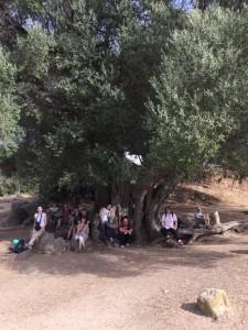Iz arheološkega najdišča Filitosa