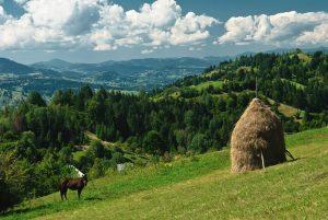Romunija