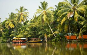 Indija-blackwaters