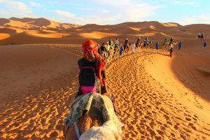 Maroko-kamele