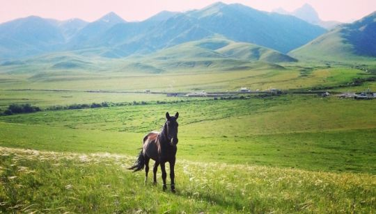 6 Susajmirska dolina - Osrednja Azija - Po lepotah starodavnih trgovskih poti