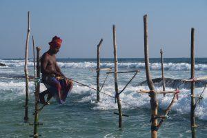 IMG 5885 300x200 - Šrilanški vtisi potnikov iz zadnjih potovanj