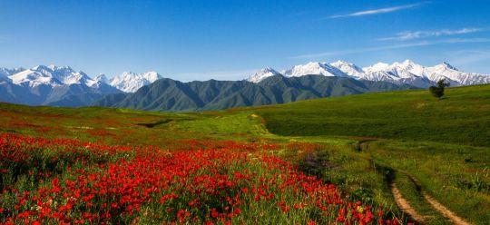 slika3 - Osrednja Azija - Po lepotah starodavnih trgovskih poti