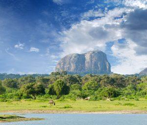 Šrilanka-yala-narodni-park