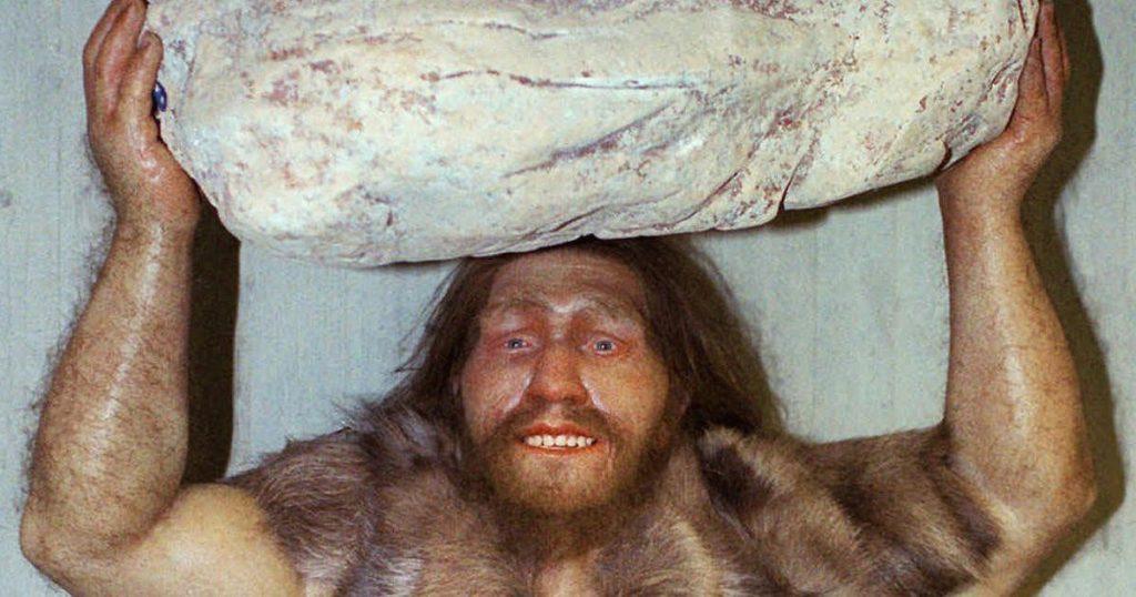 3. 1024x538 - Nagradno vprašanje: Zakaj so ljudje izrinili neandertalce?