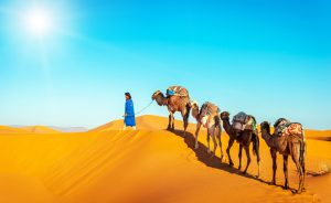 Maroko-puščava